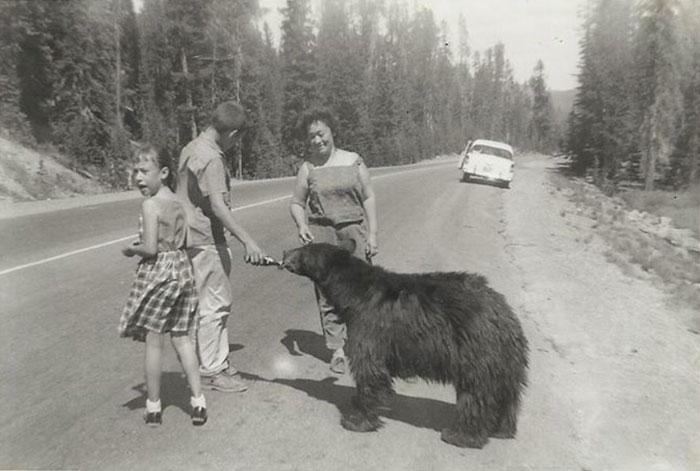Мой отец угощает медведя содовой где-то в 50-х