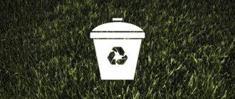 Зелёные шаги: 7 простых способов помочь природе избавиться от мусора